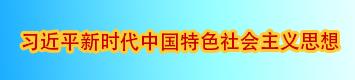 學習習近平新時代中國特色社會主義思想第二版本.jpg